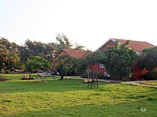 מתחם בקתה מול שקיעה (צילום סשה אלכוב)
