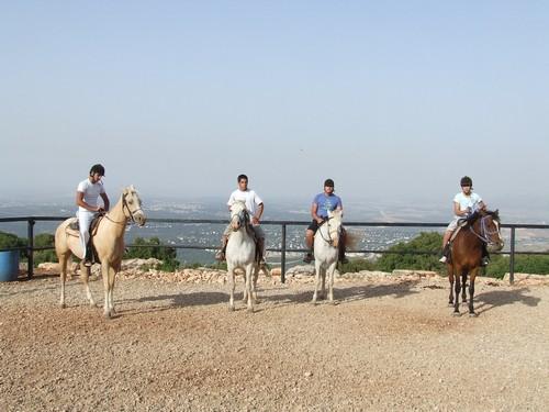 טיולי סוסים בדלית אל כרמל