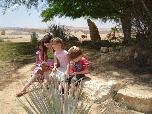 יעלים וילדים נהנים בארגז חול