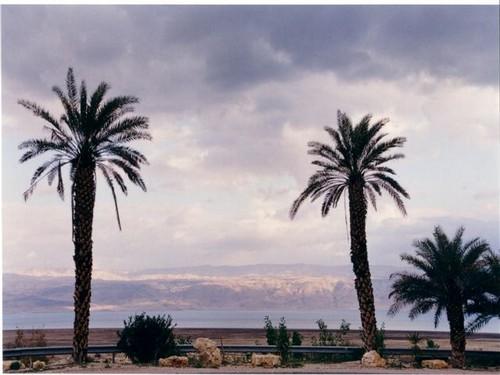 כפר הנופש קליה - הנוף לים המלח